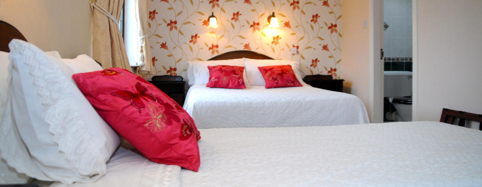 Adare Bed and Breakfast Family Room with Wifi and near Shannon Airport